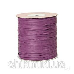 Рафія ISPIE, колір Grape