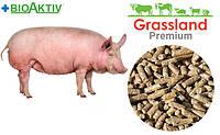 Комбікорм містить премікс Prostafeed для поросят Фініш повнораціонний 100% від 65 до 120 кг, від 1 кг