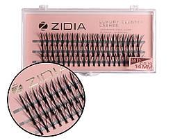 Вії накладні пучкові Zidia Cluster Lashes 16D KIM C 0.10 (3 лєнти, розмір 14 мм)
