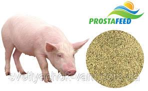 Концентрат БМВД Фініш 10% Преміум містить премікс Prostafeed для свиней від 50 до 105кг, від 1 кг