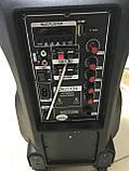 Портативная мощная колонка с чистым звуком 500W Su-Kam BT 100D + 1 беспроводной микрофон, фото 3