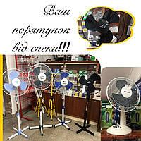 Не знаєте як врятуватись від спеки?🥵 Зробити це літо прохолоднішим❄️ допоможуть вентилятори - доступні ціни, мобільність та висока якість👍