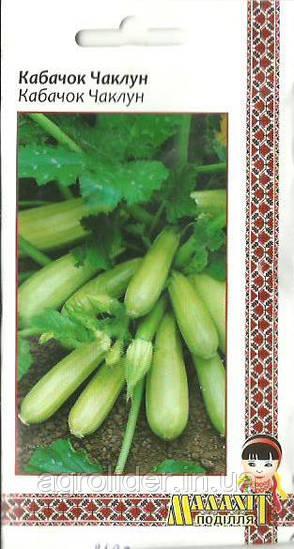 Семена кабачок Колдун  3г Белый (Малахiт Подiлля)