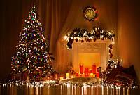 Графік роботи в період Новорічних та Різдвяних свят!