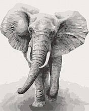 Картина по номерам  Африканский слон 40х50 см 11629-AC Art Craft