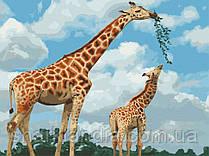 Картина по номерам  Грация саванны 40х50 см 11634-AC Саванна Жираф Art Craft