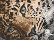 Картина по номерам  Леопард 40х50 см 11635-AC Art Craft
