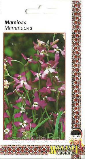 Семена цветов Матиола 1г (Малахiт Подiлля)