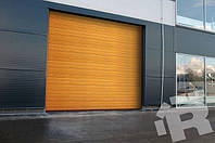TLP - секционные промышленные ворота Ryterna