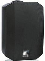 Настенная акустика AMC VIVA 5