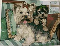 Ha-1739 Тепєри на подушках, фото 1