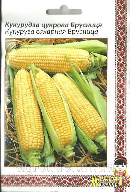 Семена кукуруза сахарная Брусница 20г Желтая (Малахiт Подiлля)