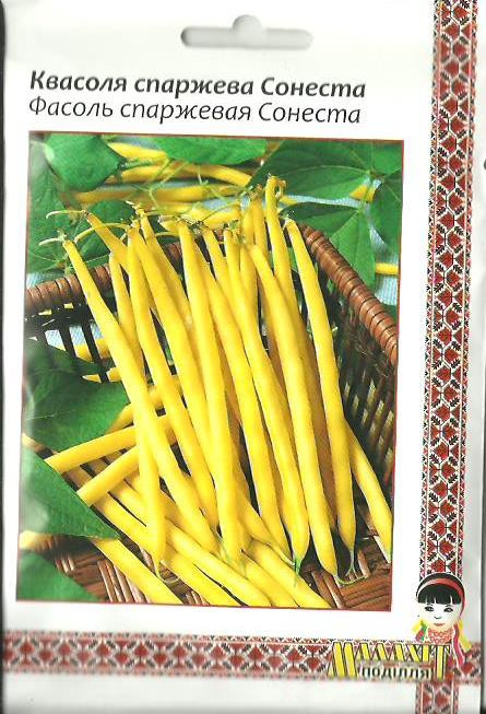 Фасоль спаржевая желтолопатковая кустовая Сонеста 20г Желтая (Малахiт Подiлля)