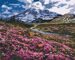 Картина по номерам рисование Brushme BS34648 Альпийский луг