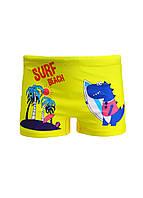 Плавки пляжные для мальчика принт Динозавр