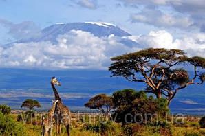 """Экскурсионный тур в Танзанию """"Кратер Нгоронгоро - озеро Маньяра"""" на 4 дня / 3 ночи"""