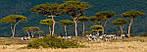 """Экскурсионный тур в Кению """"Большая паятёрка"""" на 5 дней / 4 ночи , фото 3"""