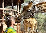 """Экскурсионный тур в Танзанию """"Программа № 4: Кения - Танзания"""" на 7 дней / 6 ночей, фото 3"""