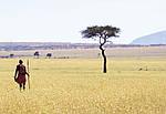 """Экскурсионный тур в Танзанию """"Программа № 5: Кения - Танзания"""" на 8 дней / 7 ночей, фото 3"""