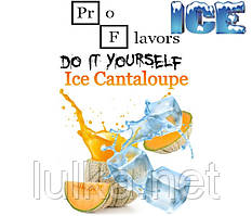 Набір для самозамісу Pro Flavors Ice Cantaloupe 100 мл