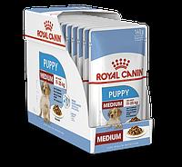 Royal Canin Medium Puppy Влажный корм для щенков средних пород 10x140 г