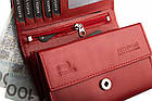 Жіночий шкіряний гаманець Betlewski з RFID 13 х 9 х 3,5 (BPD-DZ-11)- червоний, фото 3
