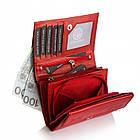 Жіночий шкіряний гаманець Betlewski з RFID 13 х 9 х 3,5 (BPD-DZ-11)- червоний, фото 6