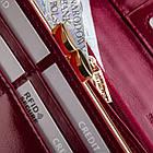 Жіночий шкіряний гаманець Betlewski з RFID 18,5 х 10 х 3,5 (BPD-OL-100) - бордовий, фото 7