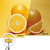 Набор блогера Кольцевая USB RGBW LED лампа Puluz PKT3043 + штатив 1.1 м / в магазине, фото 5
