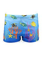 Плавки детям мальчикам шортиками пляжные с рыбками