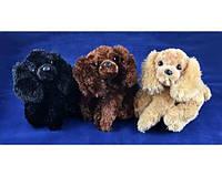 Мягкая игрушка Собака балонка (30 см) 96001