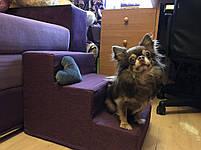 Лесенка для собак ,лесенки и ступеньки для собак, пандус ступеньки для собак, ступеньки, лесенки, фото 2