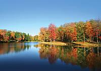Фотообои 3D 254x184 см Осенний лес за озером 12113P4 Лучшее качество