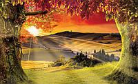 Фотообои флизелиновые 3D 368x254 см Лес и бордовое небо (2599V8) Лучшее качество