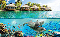 Фотошпалери 3D море 368x254 см Дельфіни на Гаваях (3193P8) Найкраща якість