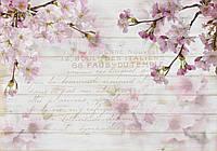 Фотообои флизелиновые цветы 368х254 см Ветки сакуры на фоне досок (12064V8) Лучшее качество