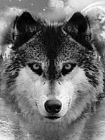 Фотообои виниловые 184x254 см Могучий волк (10147W4A) Лучшее качество