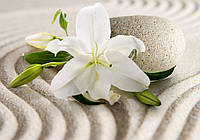 Фотообои флизелиновые 3D цветы 368x254 см Лилия на песке (3522V8) Лучшее качество