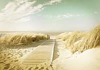 Фотошпалери 3D 368х254 см Світла дорога на пляж (11600P8) Найкраща якість