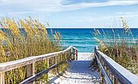Фотошпалери флізелінові 3D море 312x219 см Дорога на пляж (3462VEXXL) Найкраща якість