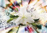 Фотообои 3D Цветы 254x184 см Волшебная лилия (3489P4) Лучшее качество