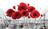 Фотошпалери 3D квіти 368х254 см Червоні маки на сірому фоні (2254P8) Найкраща якість