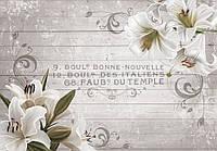 Фотообои цветы 368х254 см Белые лилии и серые доски (10050P8) Лучшее качество