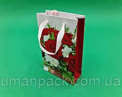 Пакет подарунковий паперовий МІНІ 8*12*3.5 арт51 (12 шт)