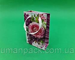 Пакет паперовий  МІНІ 8*12*3.5 арт08 (12 шт)