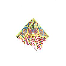 Воздушный змей M 2896 струна 30 м (Бабочки)
