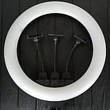 Кольцевая LED лампа ZB-F348 1 диаметром 45 см со штативом и пультом и тремя держателями, Кольцевой led прожект, фото 2