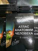 Атлас анатомии Неттер