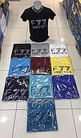 Чоловіча трикотажна футболка F77 розмір норма 46-52, колір уточнюйте при замовленні