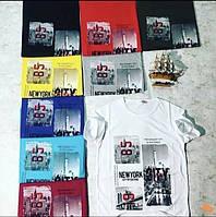 Чоловіча трикотажна футболка NY розмір норма 46-52, колір уточнюйте при замовленні